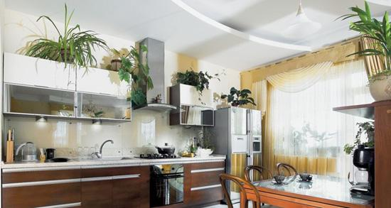 kitchen-decorating-with-indoor-plants-11 Ideas For Green Kitchens on green egg built into outdoor kitchen, green living ideas, green kitchen walls, green modern kitchens, green lunch ideas, green and beige kitchen, green and red retro kitchen, green distressed kitchen cabinets, green kitchen accessories, green painted kitchens, green kitchen backsplash, green paint your kitchen, green kitchen style, green farmhouse kitchen, green kitchen orlando, green kitchen backsplashes, green kitchen tiles, green kitchen appliances, green with white cabinets kitchens, green kitchen decorations,