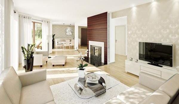 Exceptional Modern Living Room Design, Good Feng Shui Decorating With Indoor Plants And Living  Room Furniture Placement