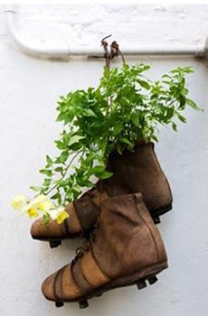 Recycling Old Shoes For Home Decorating With Green Plants