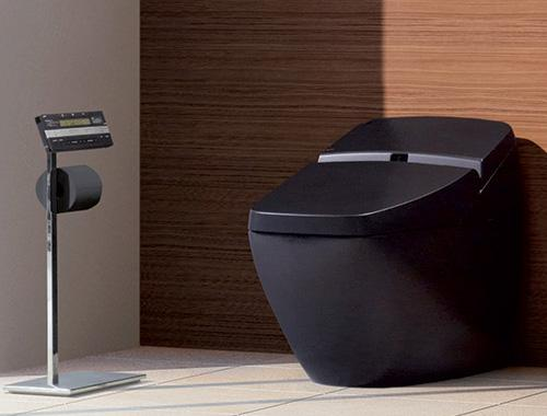 black toilet with a control panel built in toilet paper holder