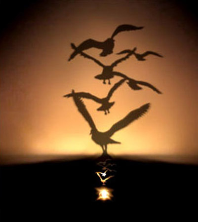 small lamp creating flying birds shadows on a wall