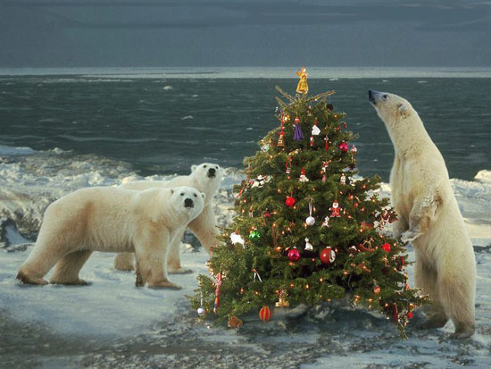 polar bears and christmas tree decorated in traditional style