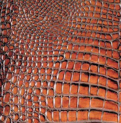 modern tiles that look like animal skin and leather