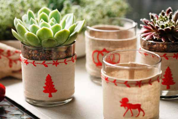 Christmas Succulent Centerpieces.Inexpensive Green Holiday Decor Handmade Christmas