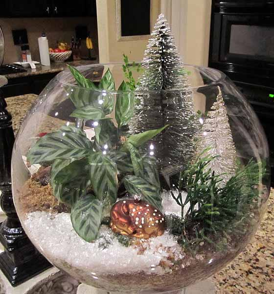 beautiful glass plant terranium with miniature christmas tree unique holiday table centerpiece idea