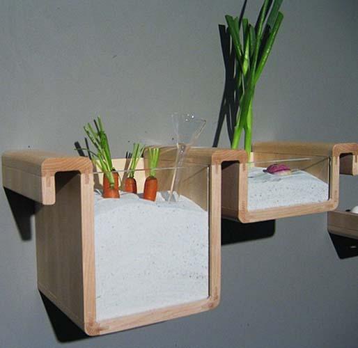 kitchen shelves for healthy food storage