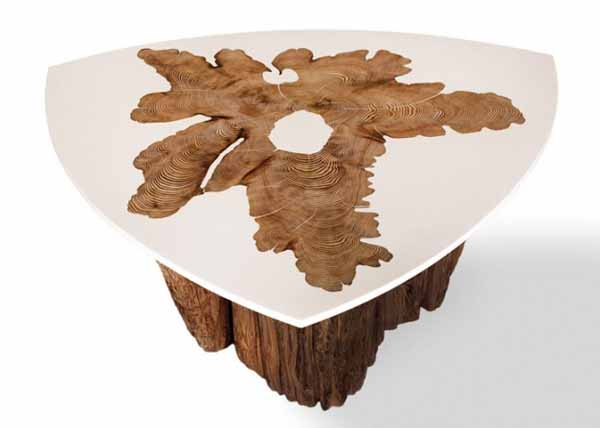 modern coffee tables with tree growth rings