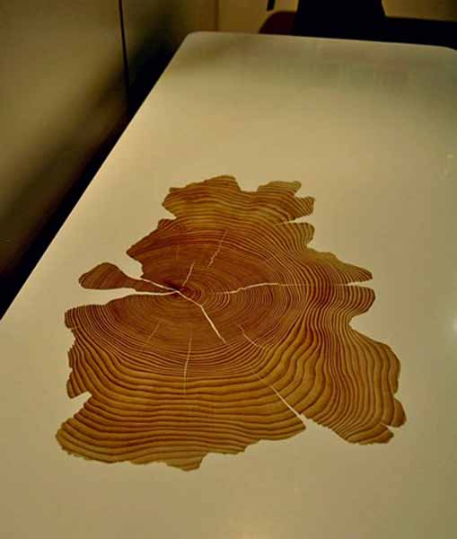 Modern Coffee Tables With Tree Growth Rings Unique Furniture Design Ideas