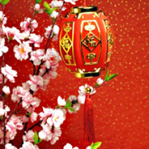paper lantern for lunar new year celebration