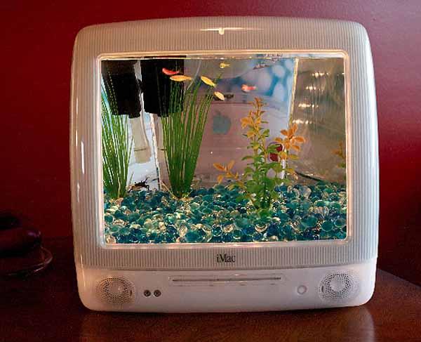 Recycling Plastic Imacs Shells Into Aquarium Tanks Green