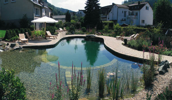 backyard swimming pools and small ponds beautiful backyard ideas. Black Bedroom Furniture Sets. Home Design Ideas