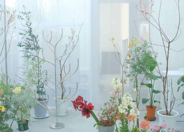 indoor garden in home interiors