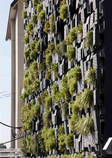 modern architectural design with wall garden
