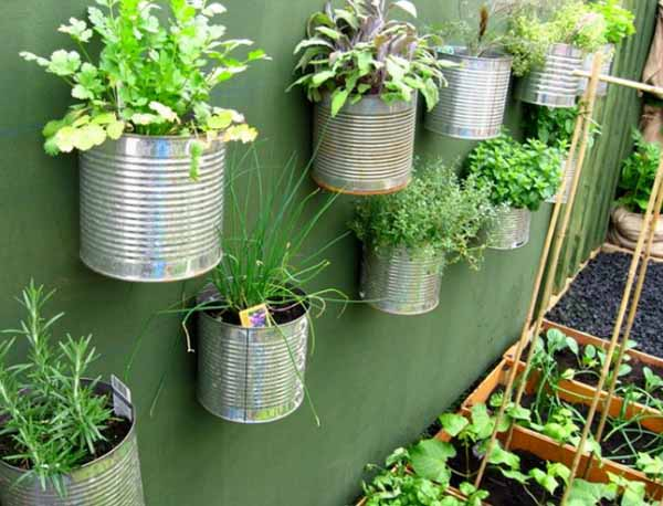 metal cans with plants for wall decorating
