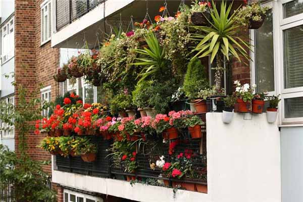 bright balcony decorating with flowers 20 blooming balcony designs rh lushome com decorating small balcony with plants