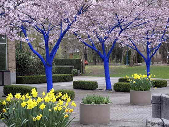 Captivating Blue Paint For Decorating Trees