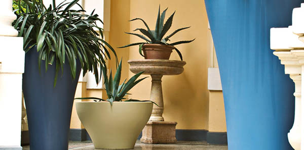 home accessories for decorating with plants