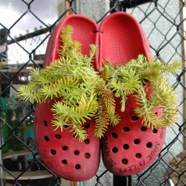 20 Ways To Recycle Shoes For Planters, Cheap Decorations