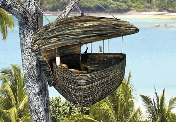 dining cabin on tree top
