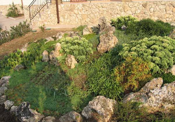 Rock garden design tips 15 rocks garden landscape ideas for Show me garden designs