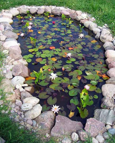 21 garden design ideas small ponds turning your backyard for Small pond house plans