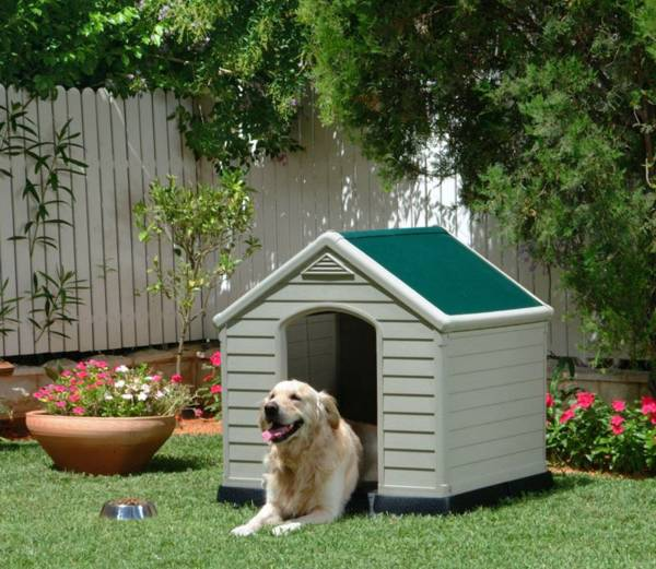 Backyard Dogs 30 dog house decoration ideas, bright accents for backyard designs