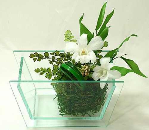 Kokedama Garden Design Ideas, Easy Eco Friendly Home