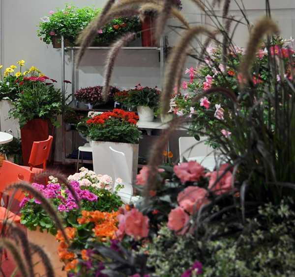 Top 10 Trends In Backyard Landscaping, Garden Design And