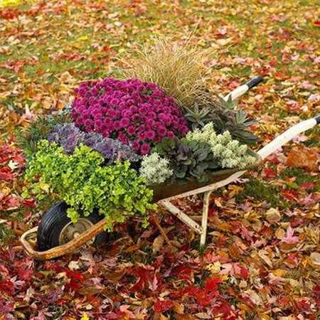 Fall Flower Arrangement For Backyard Or Front Yard Decorating