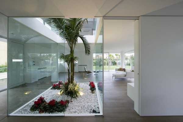 Glass Enclosure With Miniature Indoor Garden, Modern Interior Decorating  With House Plants