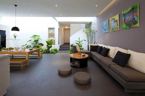 15 Gorgeous Phyto Design Ideas And Indoor Plants For Modern Interior