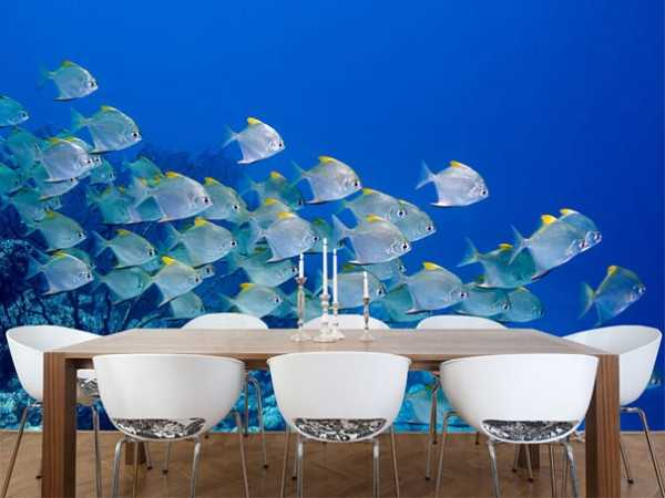 fish photograph for dining room decorating