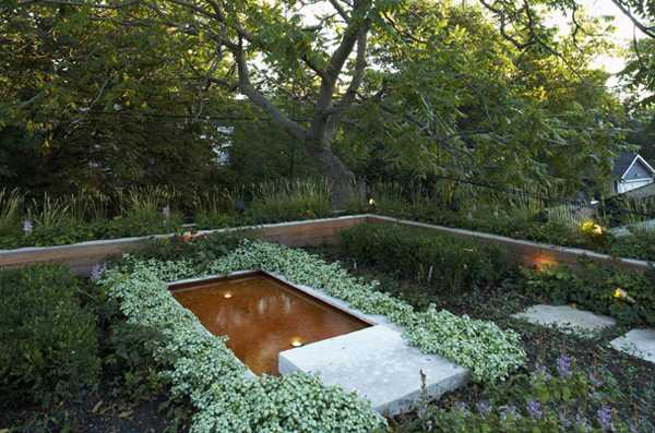 Roof Top Pond And Flower Beds