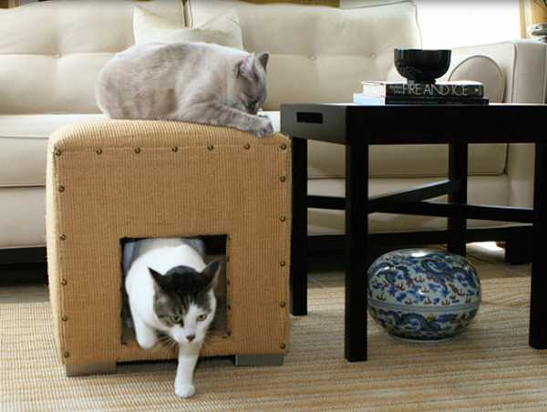 Cat Covers For Furniture