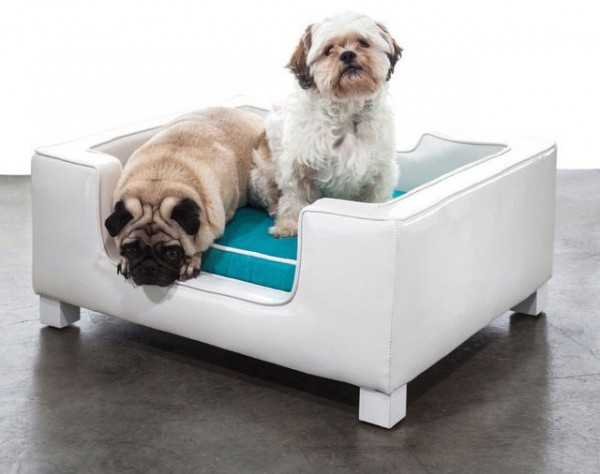 33 Modern Cat and Dog Beds, Creative Pet Furniture Design ... - photo#9