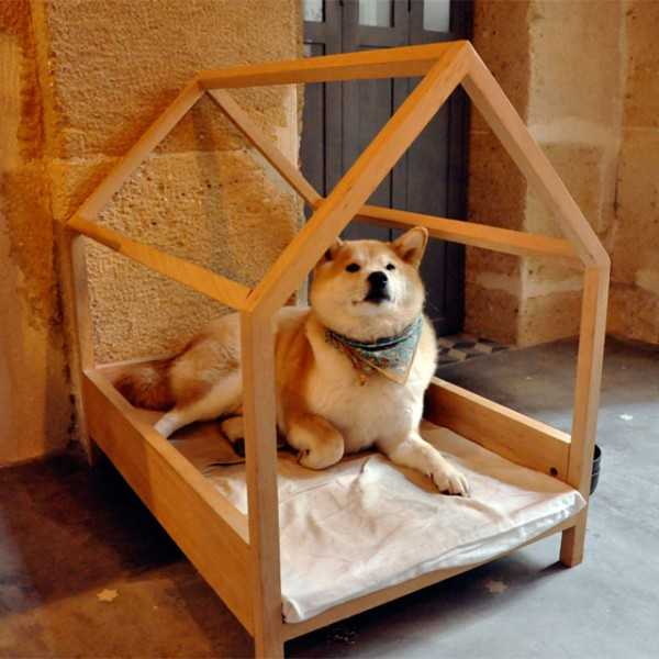 33 Modern Cat And Dog Beds Creative Pet Furniture Design