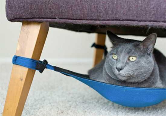 Space Saving Cat Hammock From Cat Crib Great Diy Pet