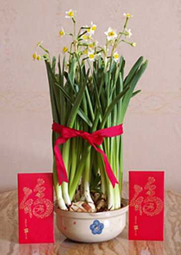 Spring Flower Arrangements For Chinese New Year Party Table Decoration