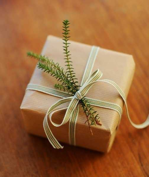 green branches and ribbon for gift box decoration
