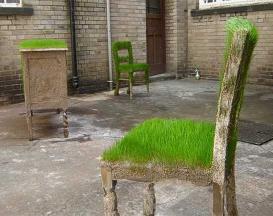 chairs with seats decorated with growing grass