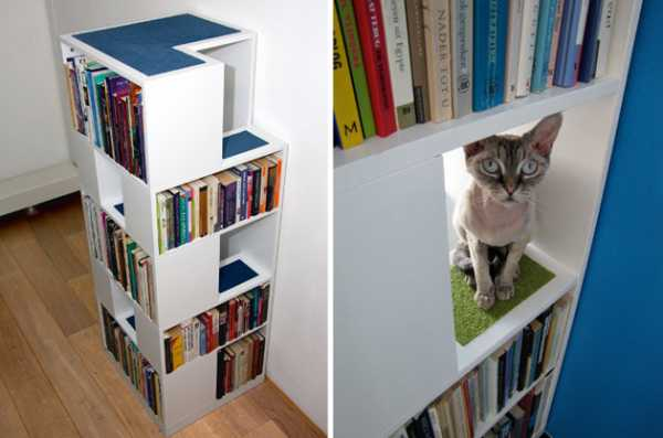 Cat Tree Shelves With Carpet
