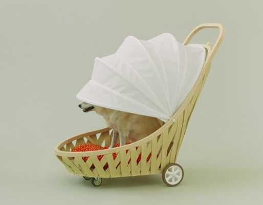 dog stroller with adjustable canopy