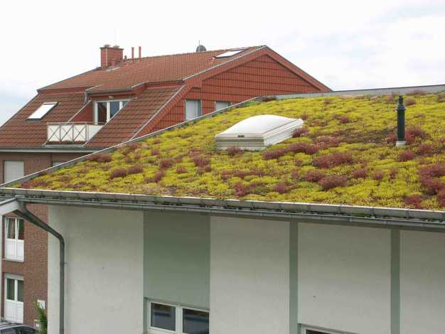 Green Roof Design And Rooftop Garden Improve Modern Houses In Many Ways