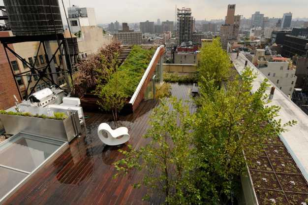 green roof and rooftop garden design with wooden patio