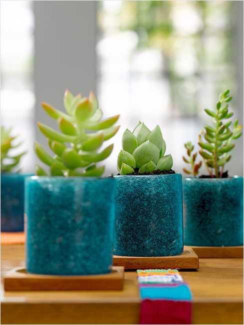 Modern interior decorating ideas incorporating indoor - Indoor plants decoration ideas ...