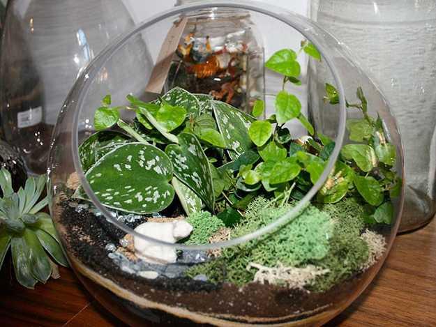 Modern Interior Decorating Ideas Incorporating Indoor Plants Into