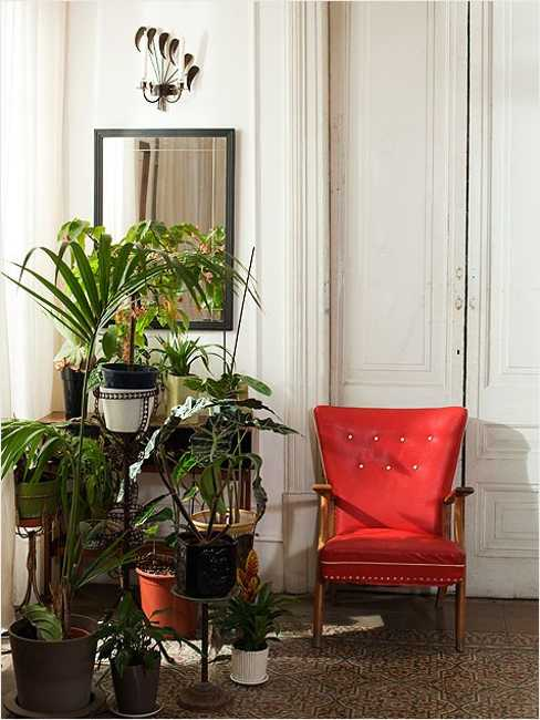 Creative Home Decorating With House Plants And A Red Chair