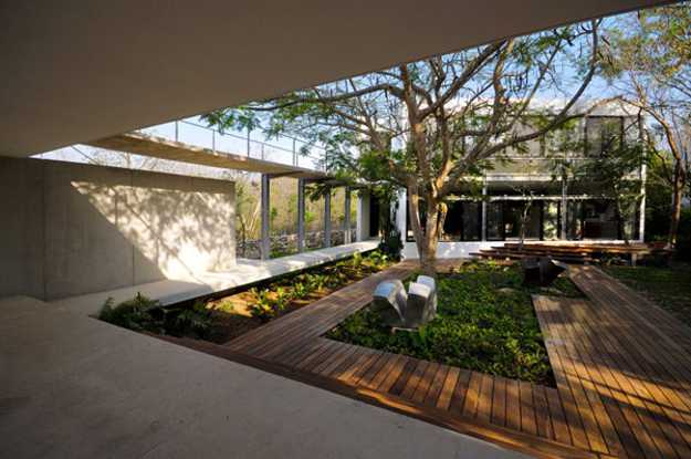 garden design around contemporary home