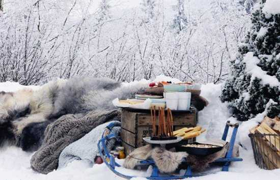 Winter Decoration Ideas and Food for Delicious Picnic on the ...