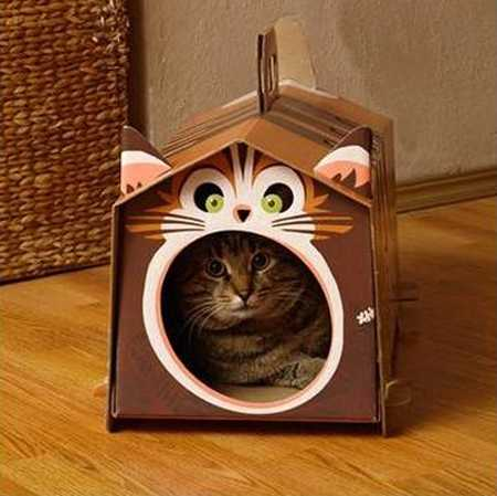 made of cardboard cat gouse with cat image